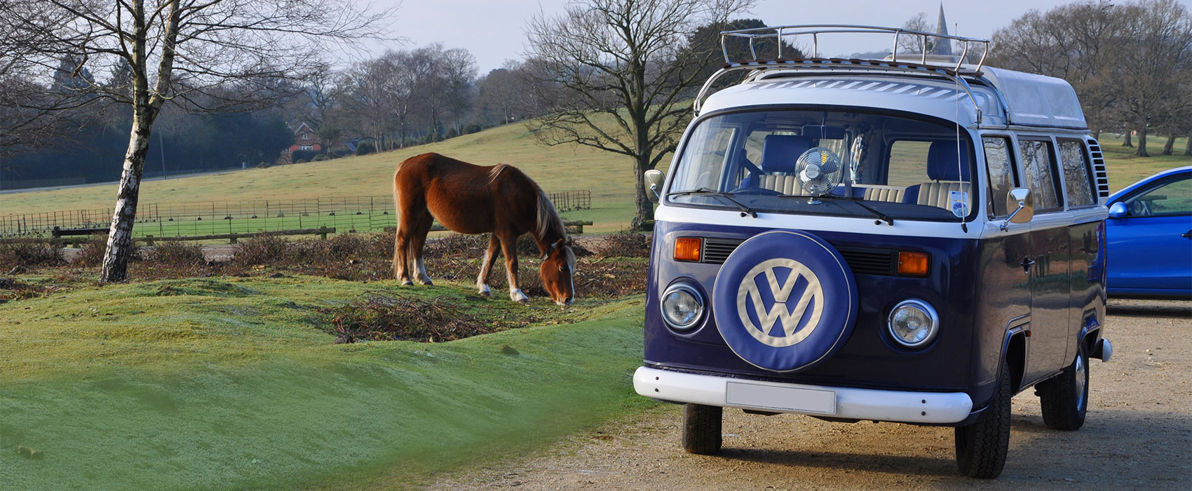 Your VW Adventure Begins Here